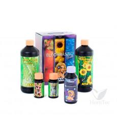 Bloombastic Box Terra